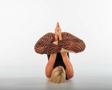 Los mejores profesores de yoga