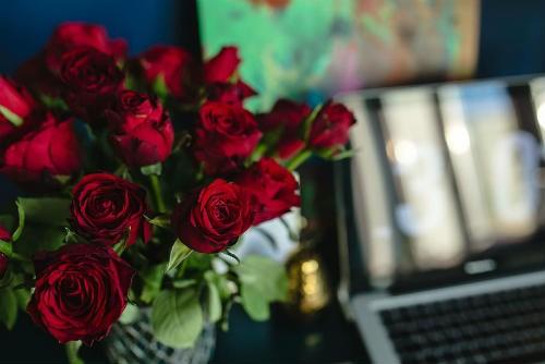 beneficios comprar rosas hogar