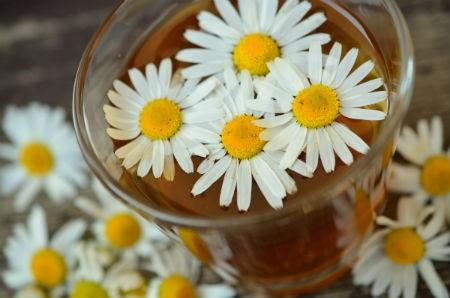 propiedades medicinales