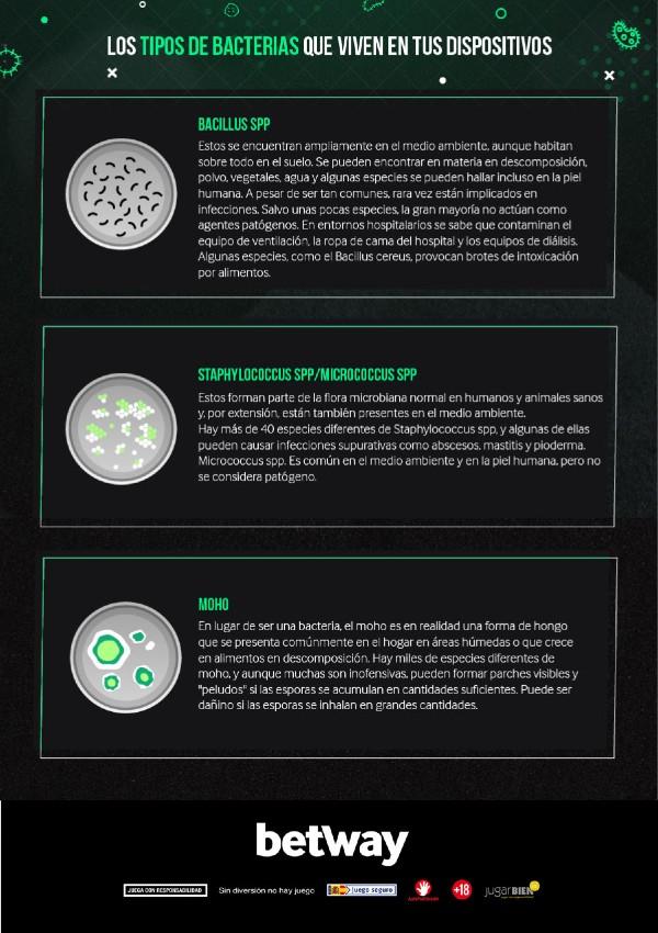 Tipos de bacterias